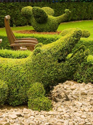 Diseño de todo tipo de Jardines