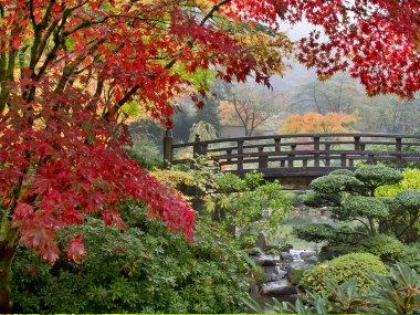 Dise o de jardines parques ticos y terrazas jardines for Jardines pequenos tipo japones
